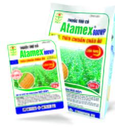 Atamex 800WP